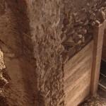 visita guidata sotterranei crypta balbi