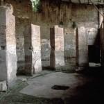 visite guidate crypta balbi roma